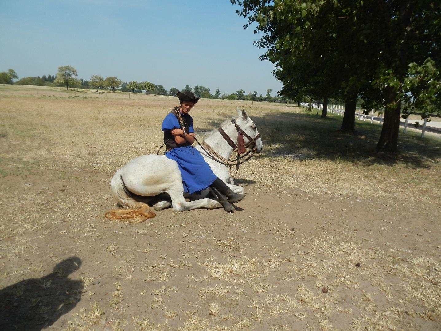 Pferdehirt